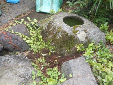 つくばいが枯葉等で埋まっていたものを除去した状況です。