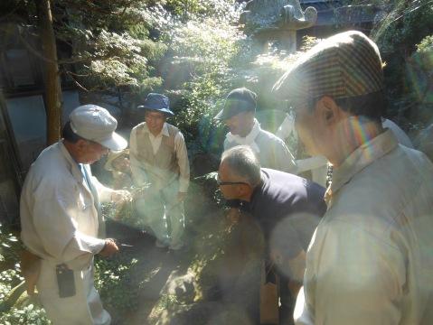 須賀造園の須賀庭師から剪定方法やコツを伝授しました